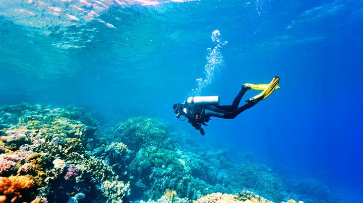 paros-diving